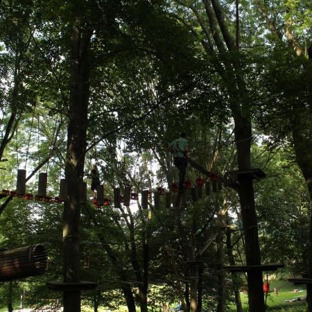 JU Meckenheim im Kletterwald
